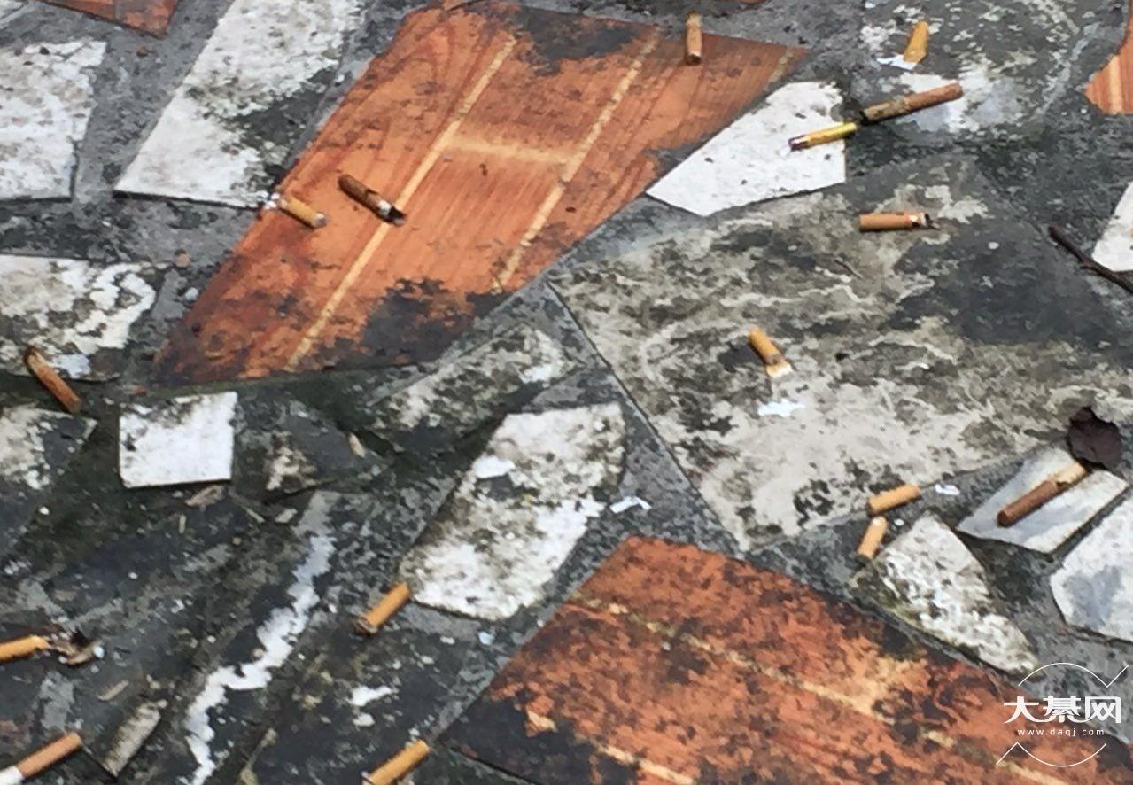 小区楼上住户把垃圾扔到我家阳台,素质何在?